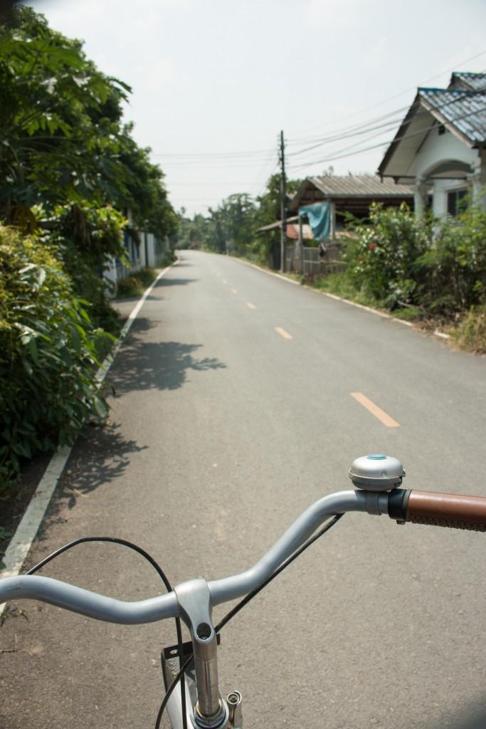 Chiang Mai Roadtrip