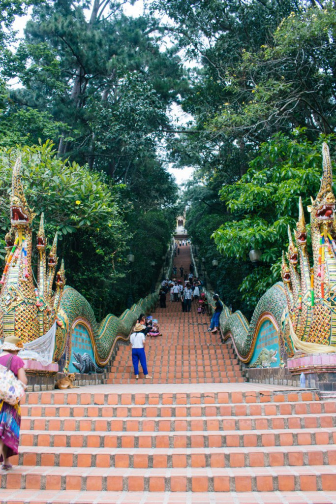 Stairs to temple, Doi Suthep