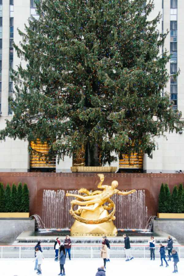 tannenbaum im rockefeller center new york
