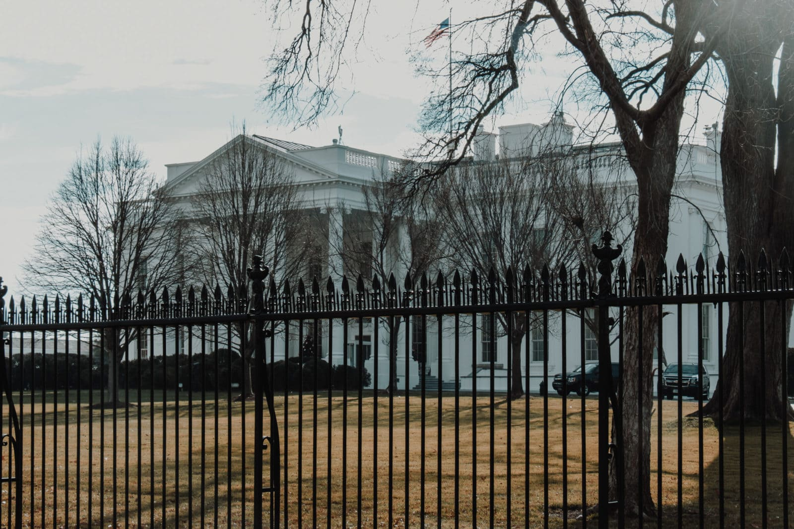 Best Things to do in Washington DC The White House