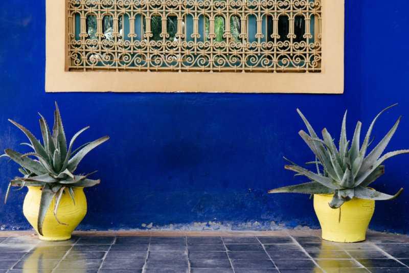 Gelbe Vasen blaue Wand Jardin Majorelle Yves Saint Laurent Marrakesch