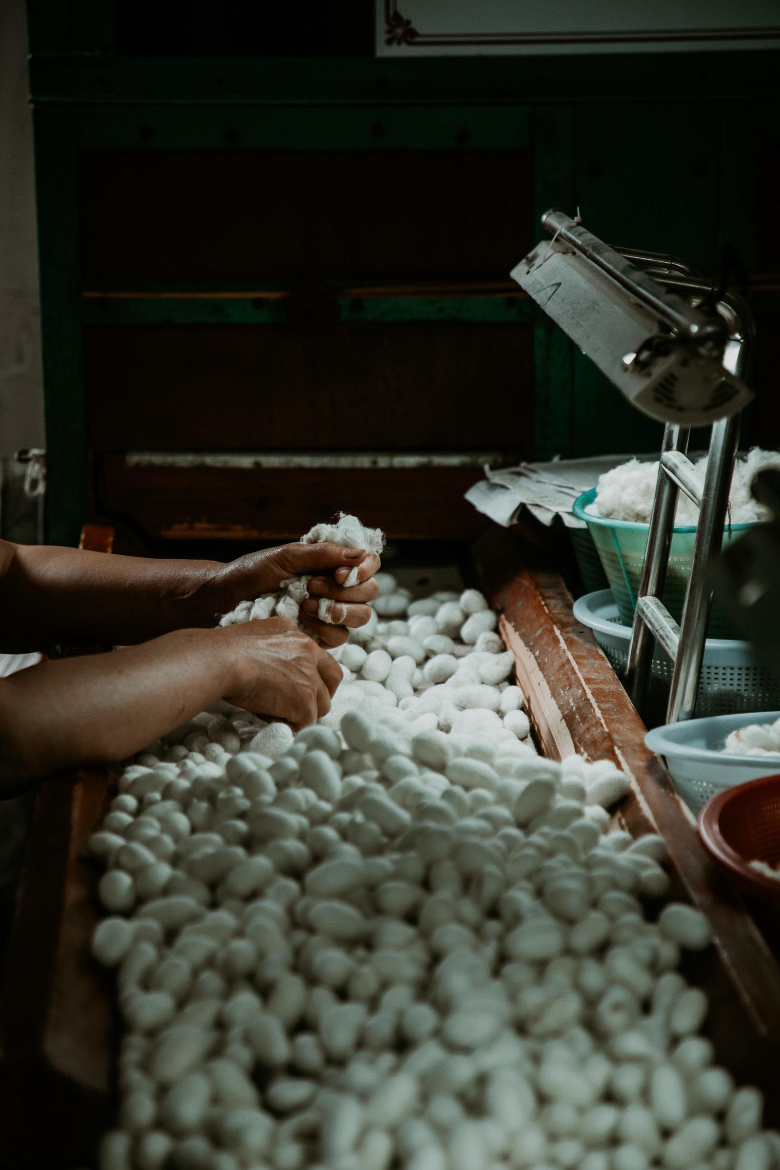 Suzhou Sehenswürdigkeiten Seidenfabrik Kokons Seidenraupe