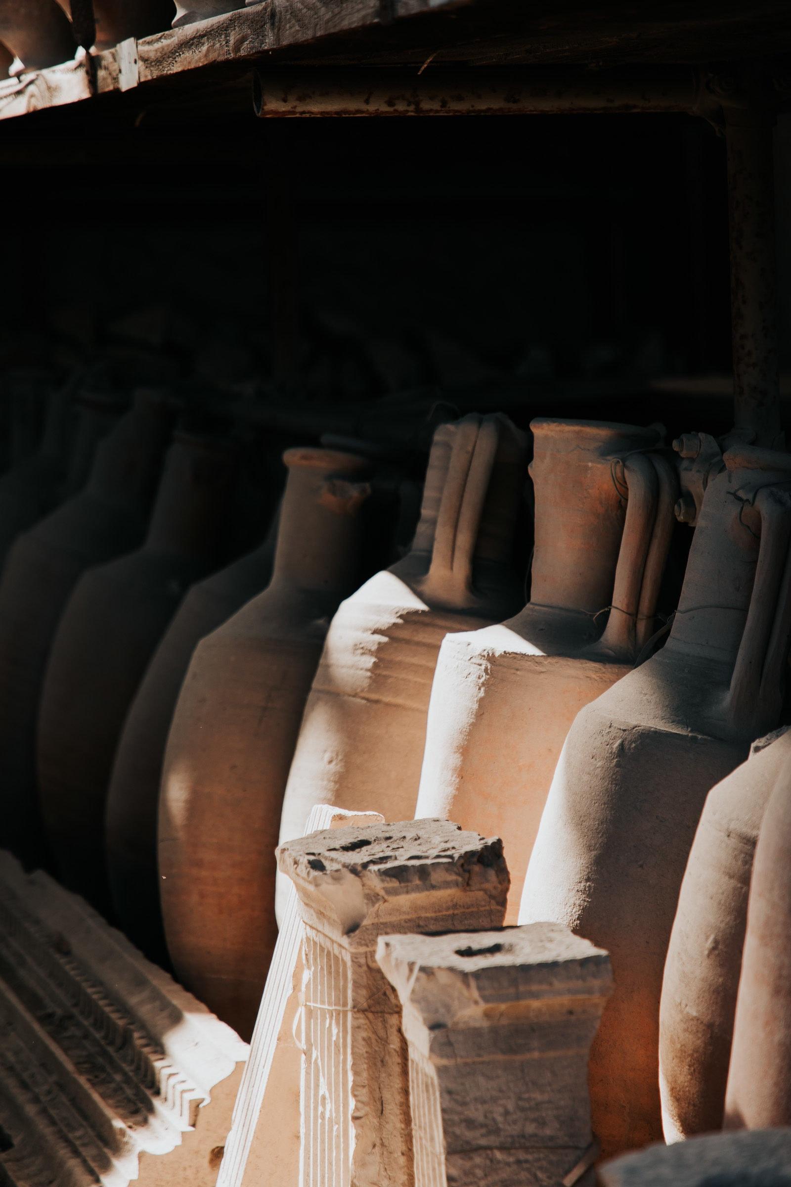 Pompeji: Von Mumien und bissigen Hunden. 10