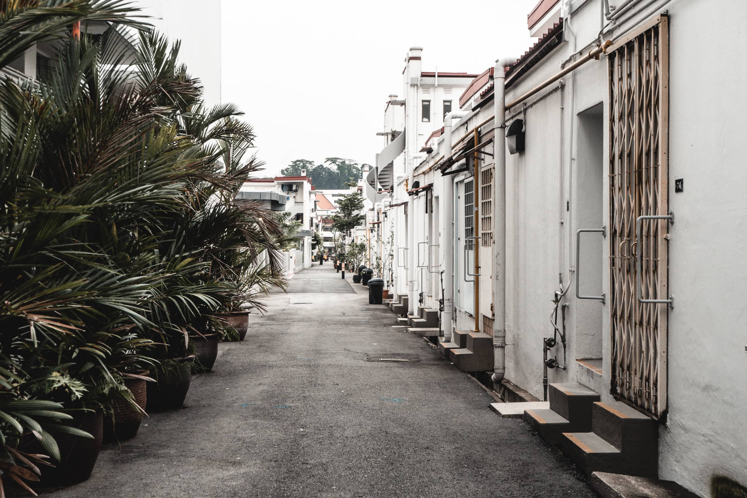 Tiong Bahru: The hottest district in Singapore!