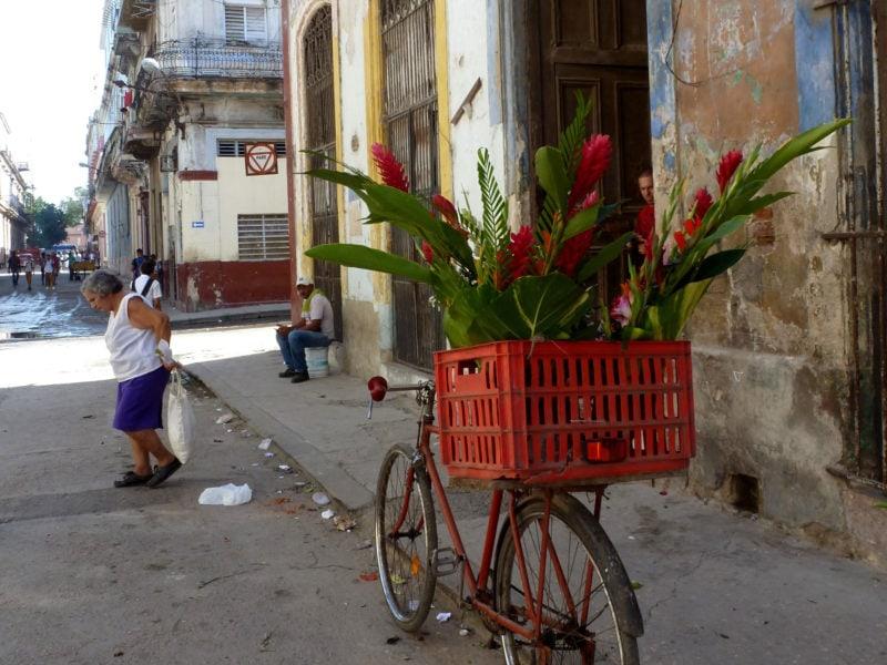 The Happy Jetlagger Travel & Stories Reiseblog 4