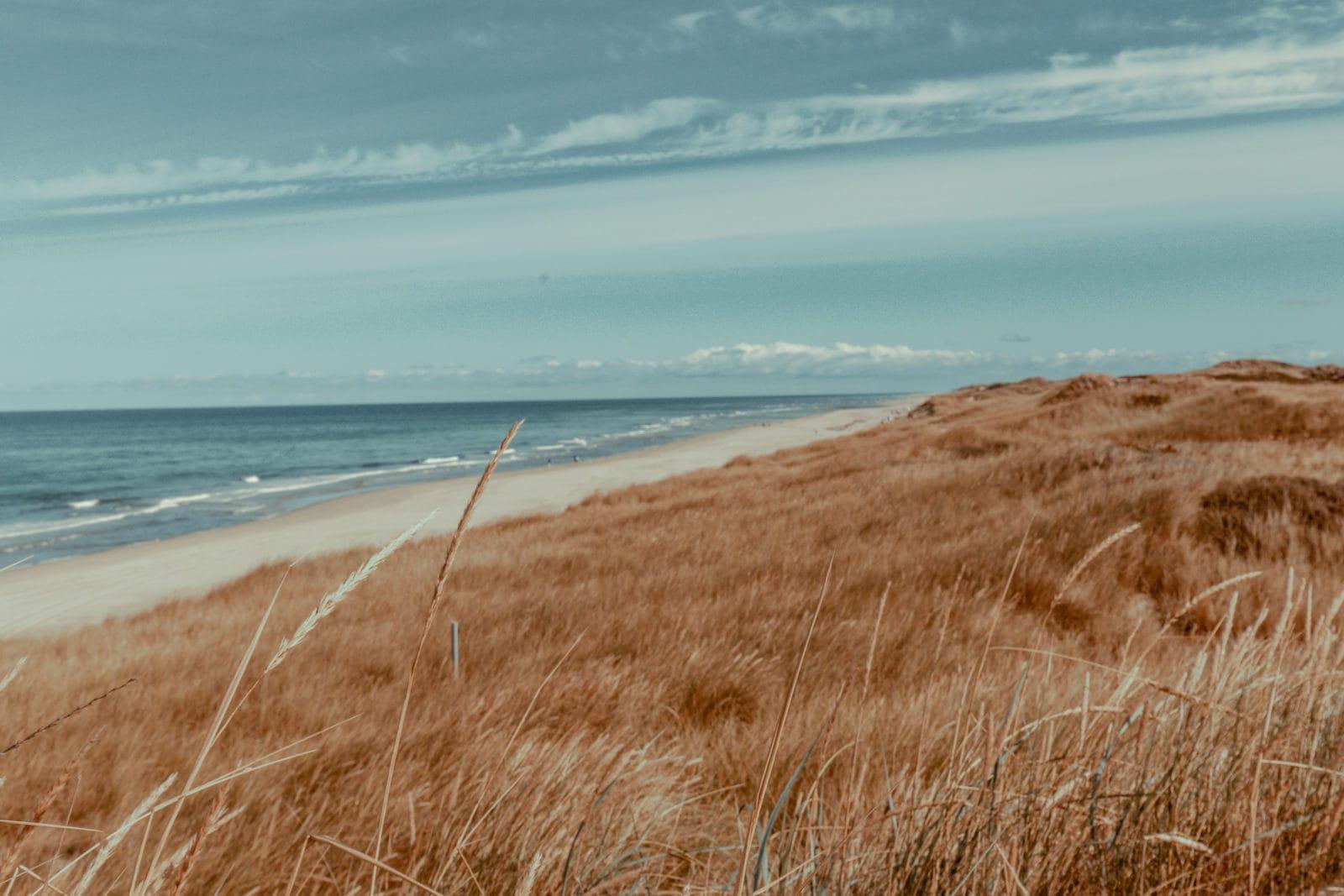 Sylt: Bildungsurlaub mit Yoga, Strand & Meer 6