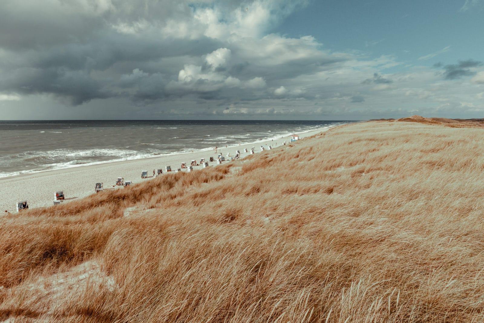 Sylt: Bildungsurlaub mit Yoga, Strand & Meer 14