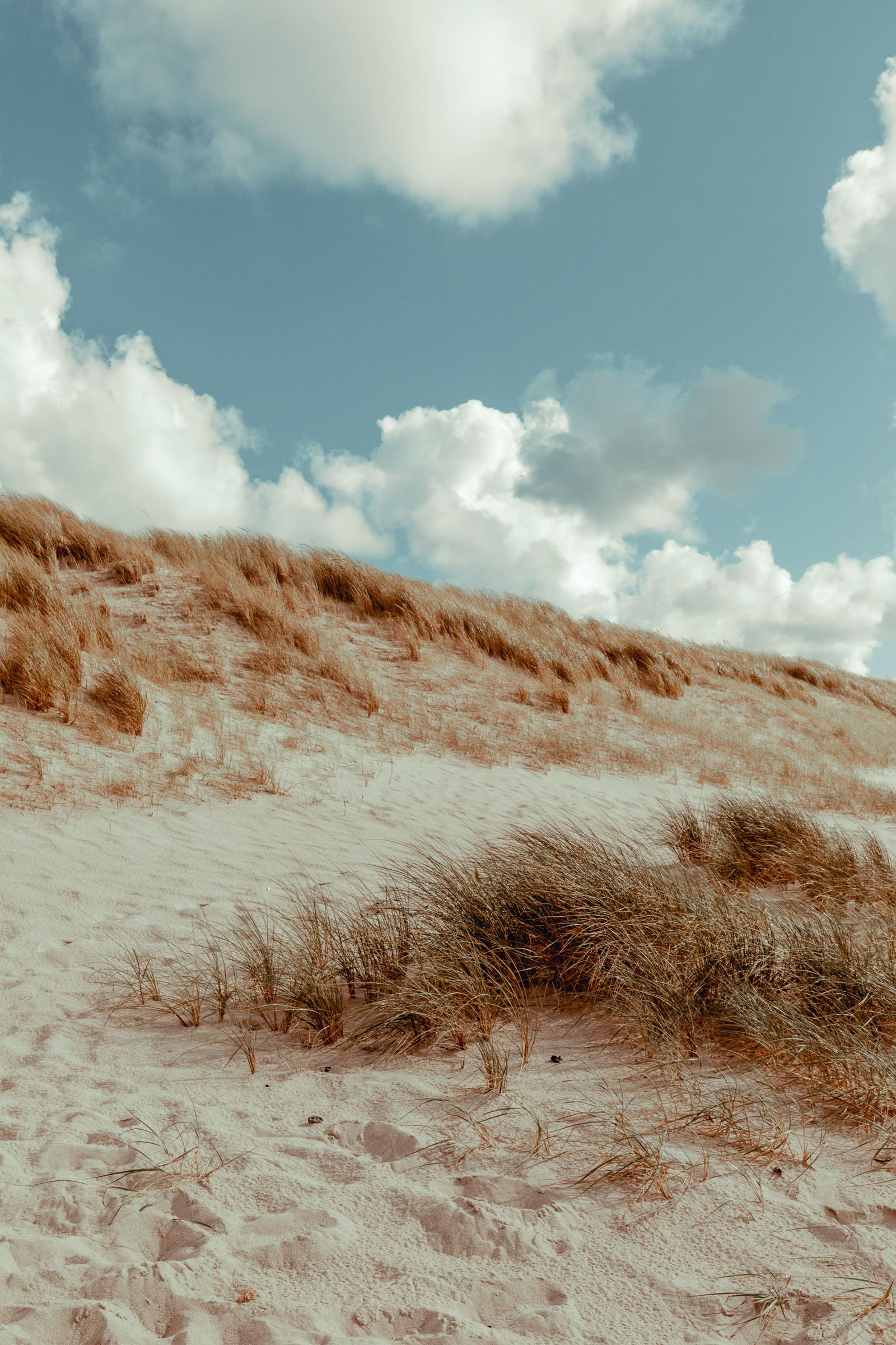 Sylt: Bildungsurlaub mit Yoga, Strand & Meer 8