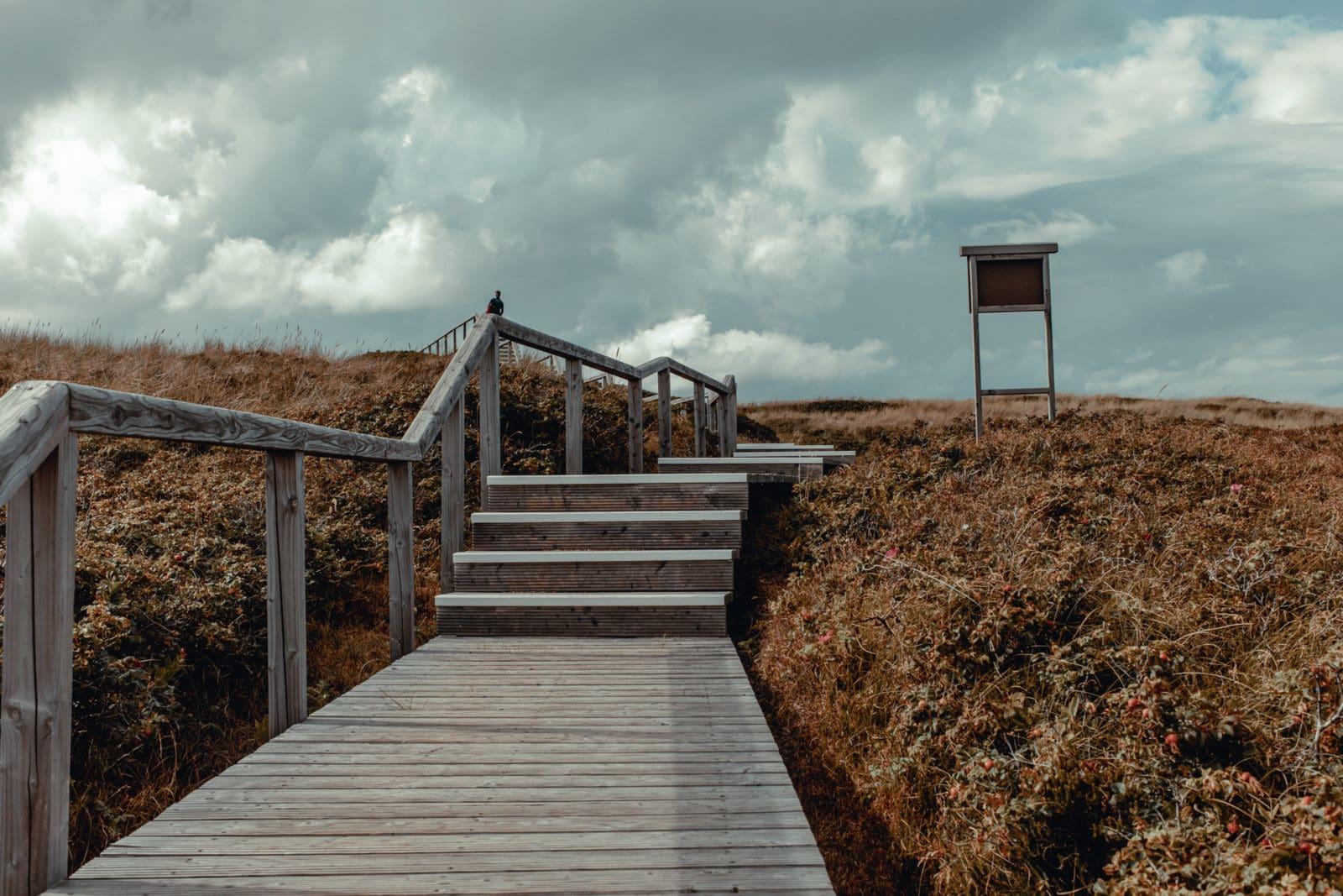 Sylt: Bildungsurlaub mit Yoga, Strand & Meer 12