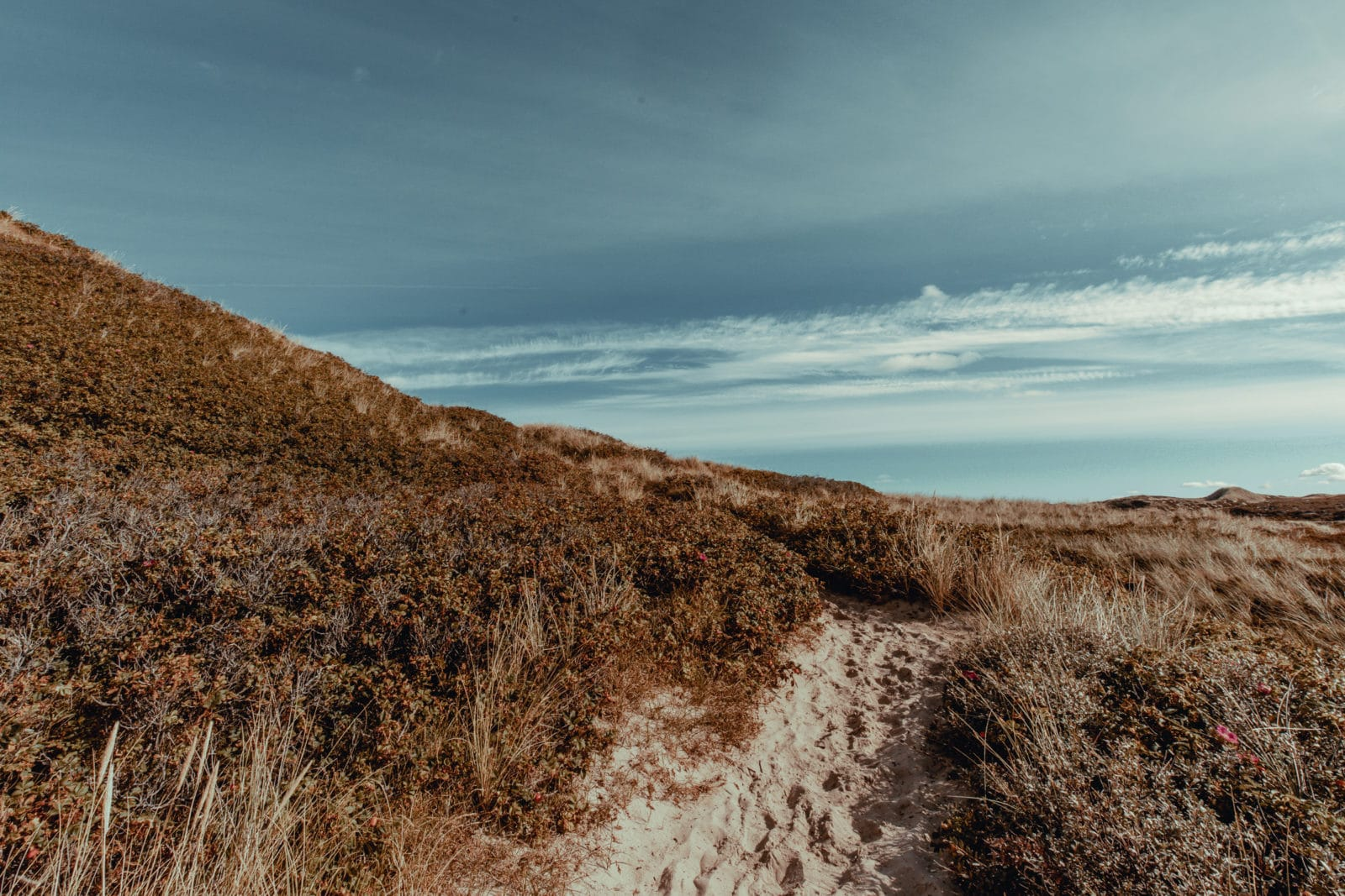 Sylt: Bildungsurlaub mit Yoga, Strand & Meer 29