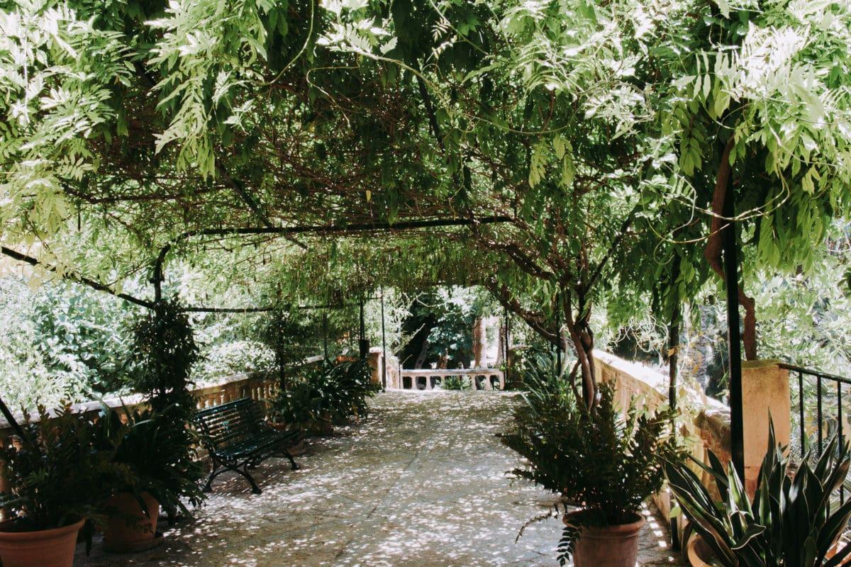 Laubengang mit vielen Pflanzen Gärten von Alfabia Mallorca