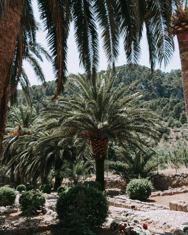 Jardines de Alfabia: Mallorcas tropischer Garten 6